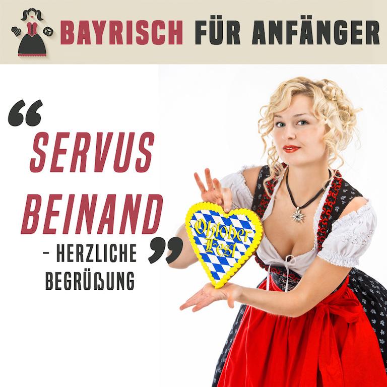 bayrisch f r anf nger feiern wie die bayern. Black Bedroom Furniture Sets. Home Design Ideas